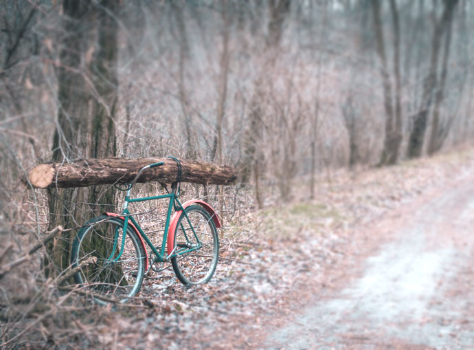 utility cycling, cargo bike