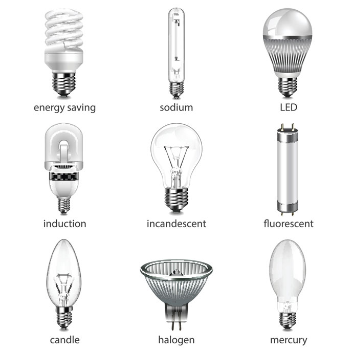 a guide to light bulbs