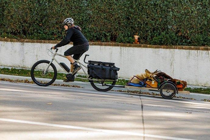 Surly big easy cargo bike